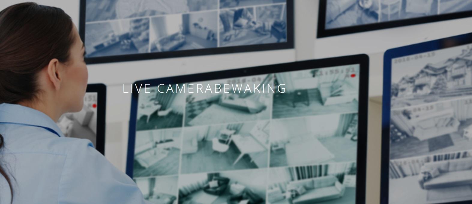 logo-camerabewaking-1